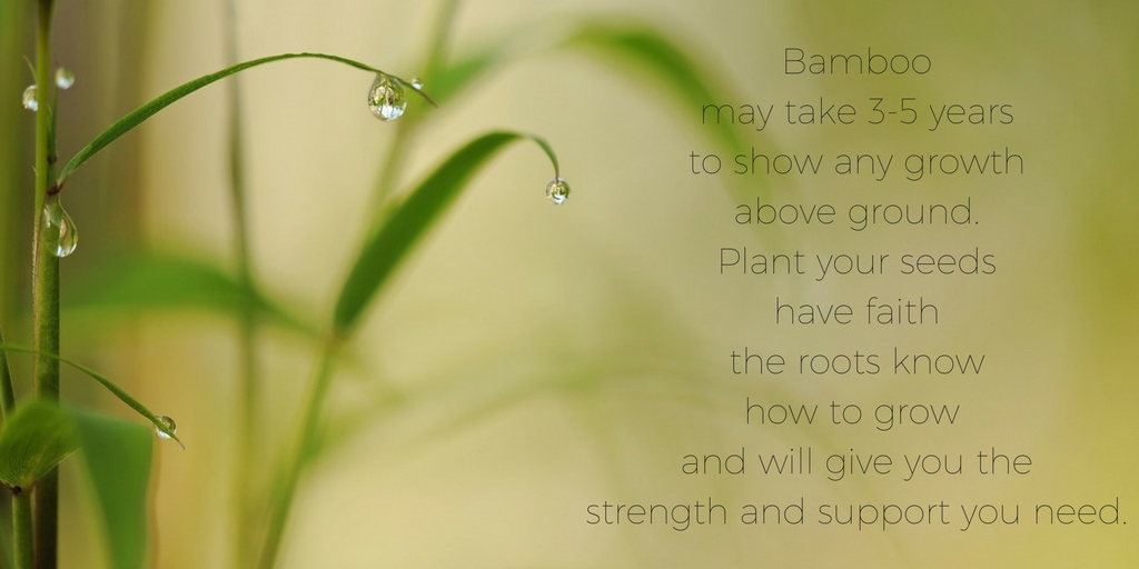 """<img src=""""bamboo.jpg"""" alt=""""bamboo and rain drops with quote"""">"""