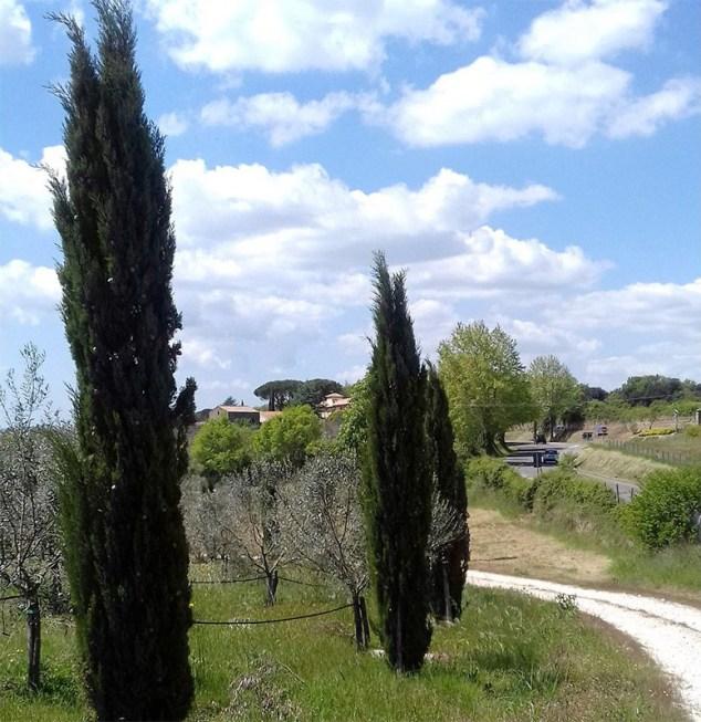 Driveway of Villa, Farnese, Italy