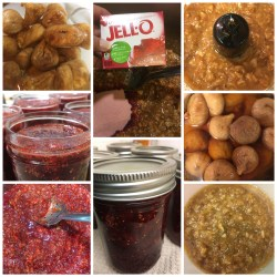 Cranberry Fig Preserves
