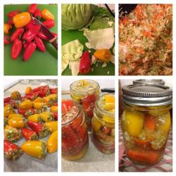 Pickled Cabbage Stuffed Peppers