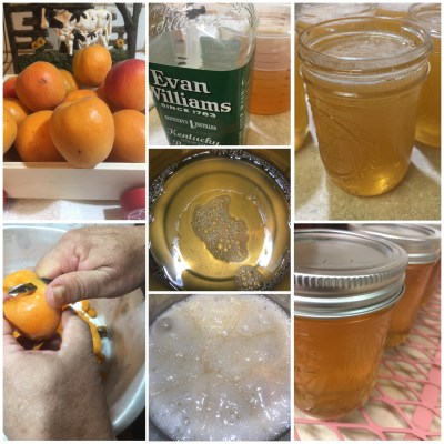 Apricot and Bourbon Cocktail Jelly