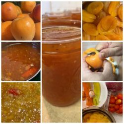 Sweet and Sour Glaze