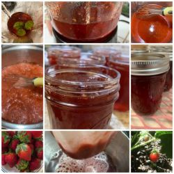 Strawberry Habanero pepper jelly
