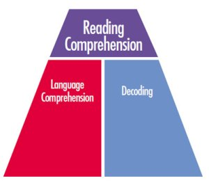 Reading Comprehension becomes Stitch Comprehension