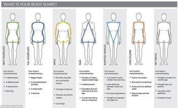 ASOG Webinar: Body Types