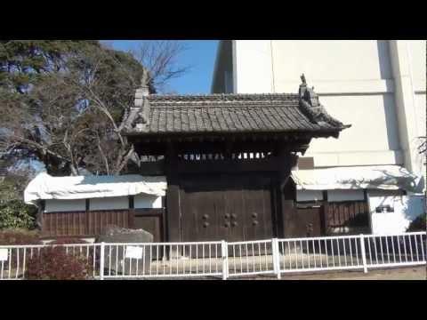 『茨城県石岡市』の動画を楽しもう!