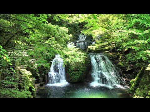 『三重県名張市』の動画を楽しもう!