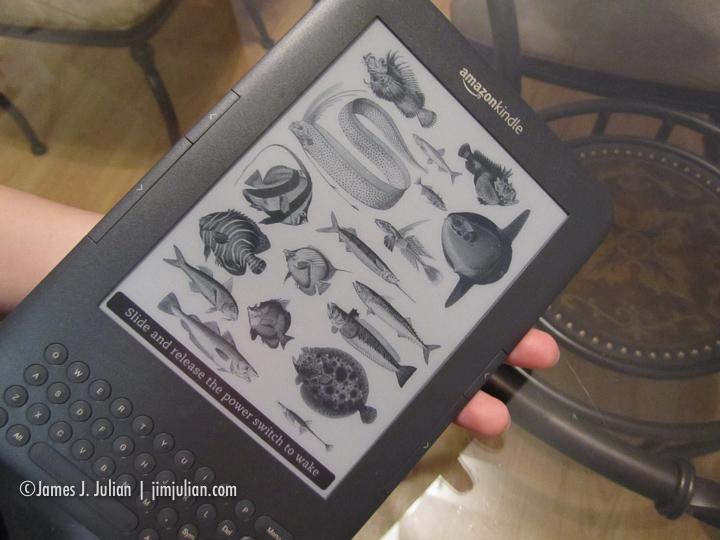 Amazon Kindle Keyboard eBook Reader