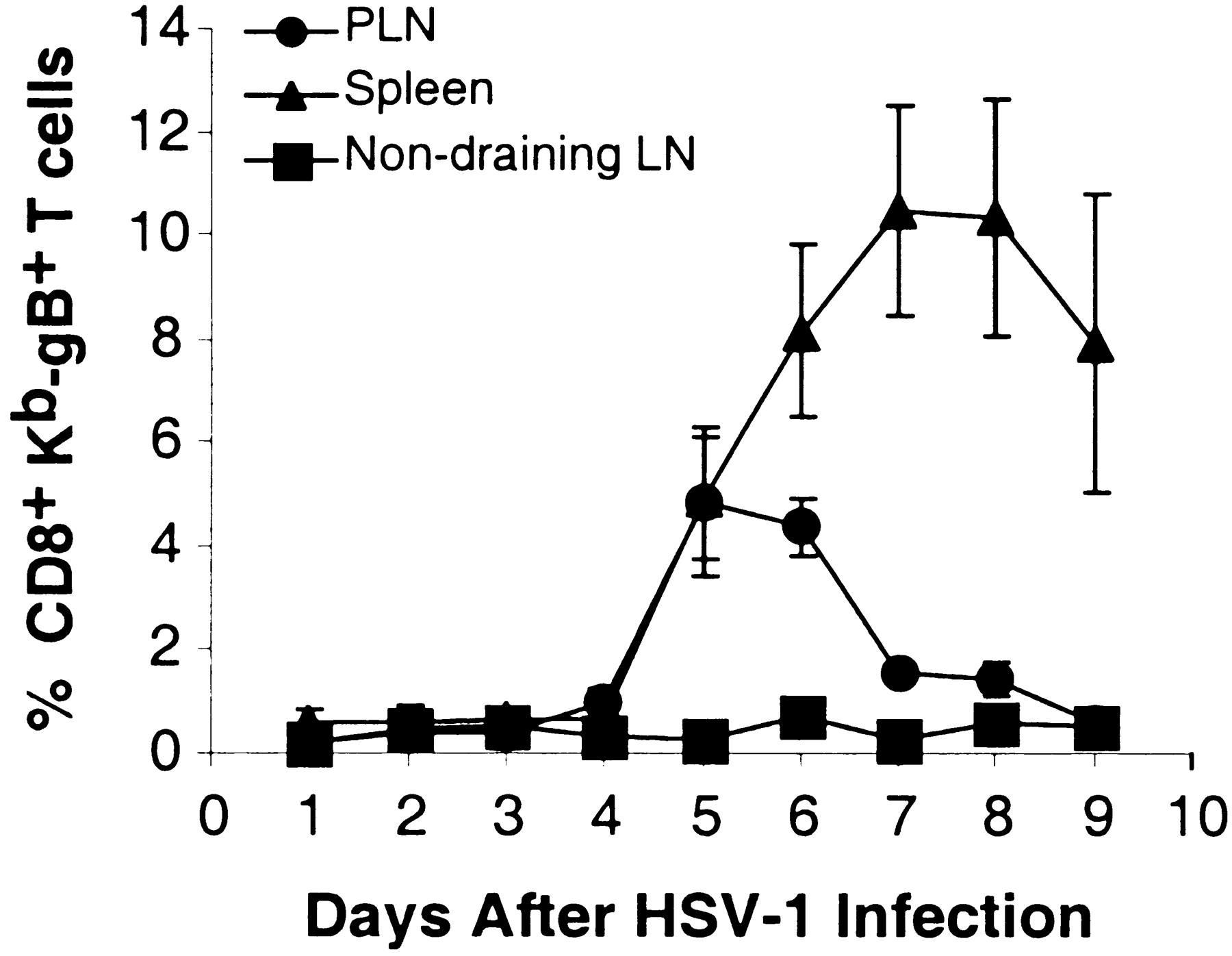 Progression Of Armed Ctl From Draining Lymph Node To