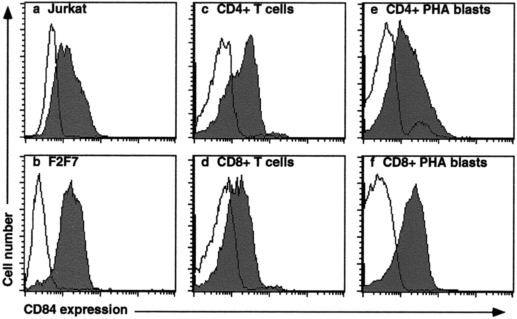 Functional Requirements For Interactions Between Cd84 And Src Homology 2 Domain Containing