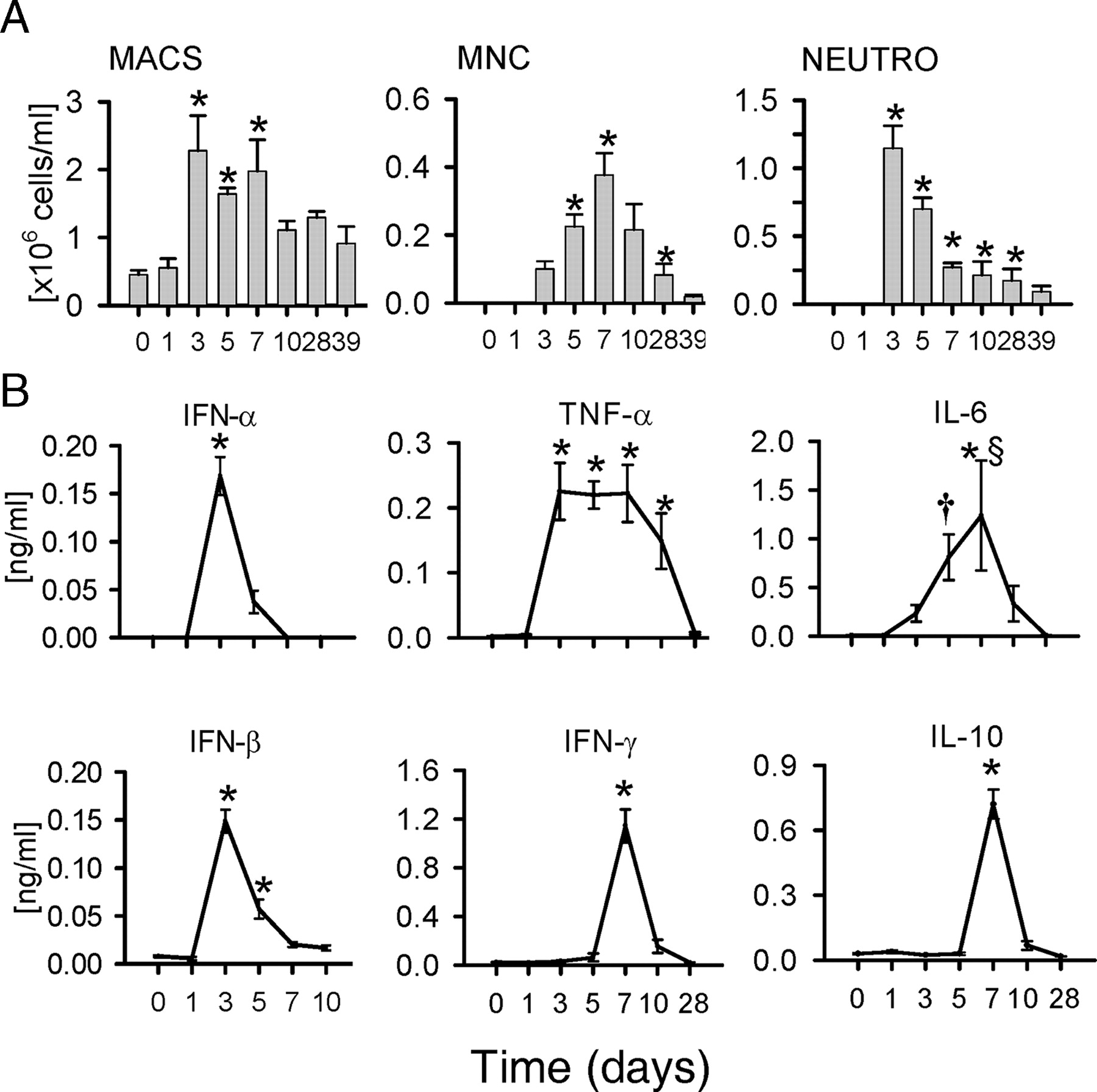 Acute But Not Resolved Influenza A Infection Enhances