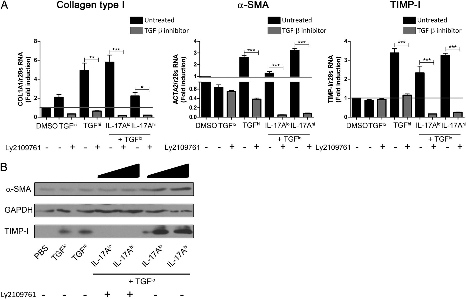 Il 17a Enhances The Expression Of Profibrotic Genes Through Upregulation Of The Tgf Receptor
