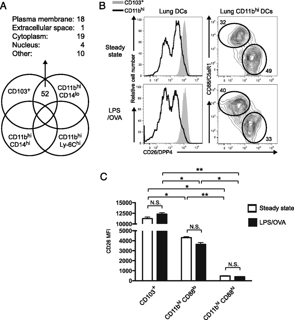 Complement Receptor C5ar1 Cd88 And Dipeptidyl Peptidase 4