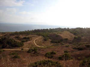 Portuguese Bend Landslide Area