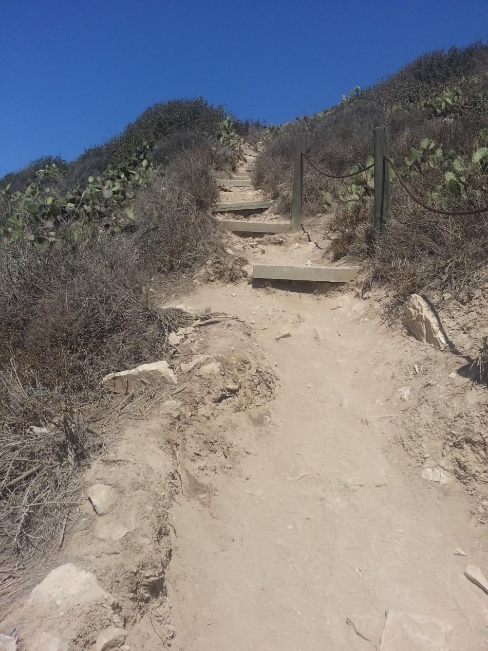 Sagebrush Stairs