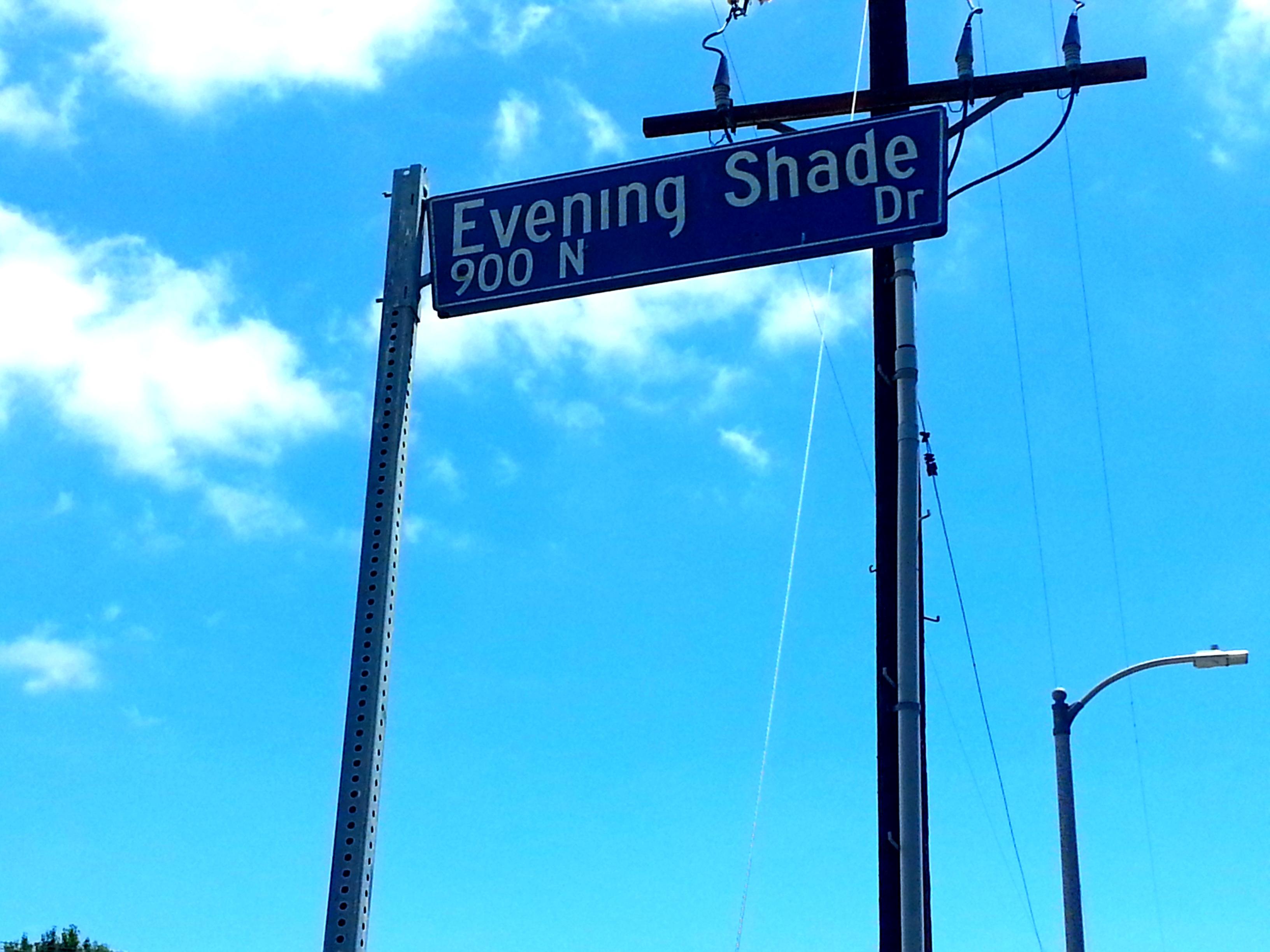 Evening Shade