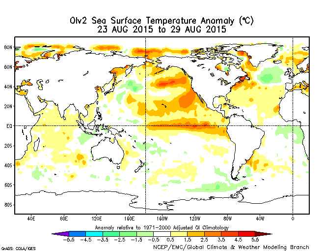 Sea Surface Temperature Anomolies