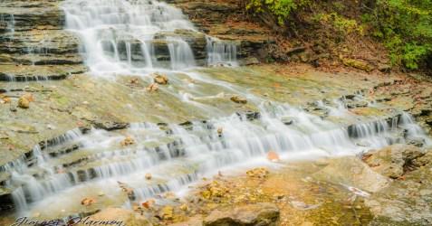 nature photography Nature Photogrpahy – Autumn in Bella Vista Arkansas Autumn at Tanyard Creek 26