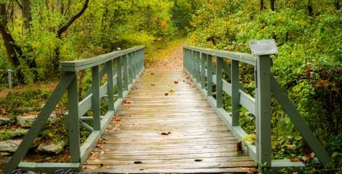 nature photography Nature Photogrpahy – Autumn in Bella Vista Arkansas Autumn at Tanyard Creek 4