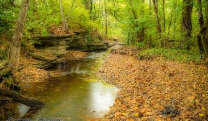 nature photography Nature Photogrpahy – Autumn in Bella Vista Arkansas Autumn at Tanyard Creek 6