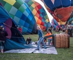 Hot Air Balloon Hot Air Balloon Festival Hot Air Balloon Festival 01101