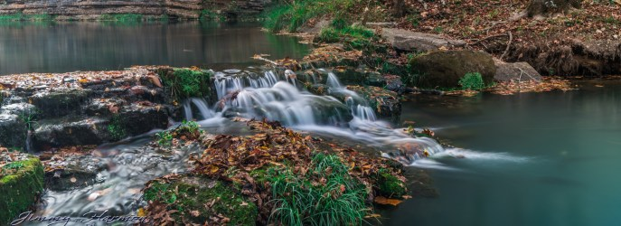 nature photography Nature Photography – Dogwood Canyon Dogwood Canyon 21