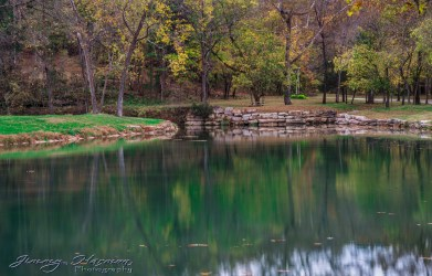 nature photography Nature Photography – Dogwood Canyon Dogwood Canyon 33
