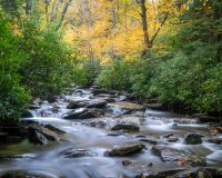 River in The Great Smoky Mountains