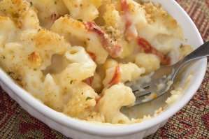 http://www.dreamstime.com/stock-images-tomato-mac-cheese-image16198714