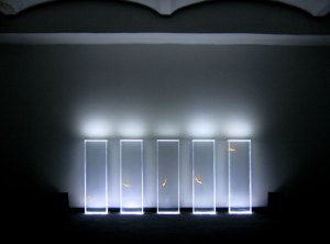 Fish installation for Quiet Ensemble