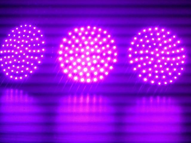UV LEDs