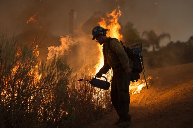 A firefighter with the Texas Canyon Hotshot crew lights a backfire near homes to fight the Sand Fire on July 23 2016 near Santa Clarita, California. Fueled by temperatures reaching about 108 degrees fahrenheit, the wildfire began yesterday has grown to 11,000 acres. / AFP / DAVID MCNEW (Photo credit should read DAVID MCNEW/AFP/Getty Images)