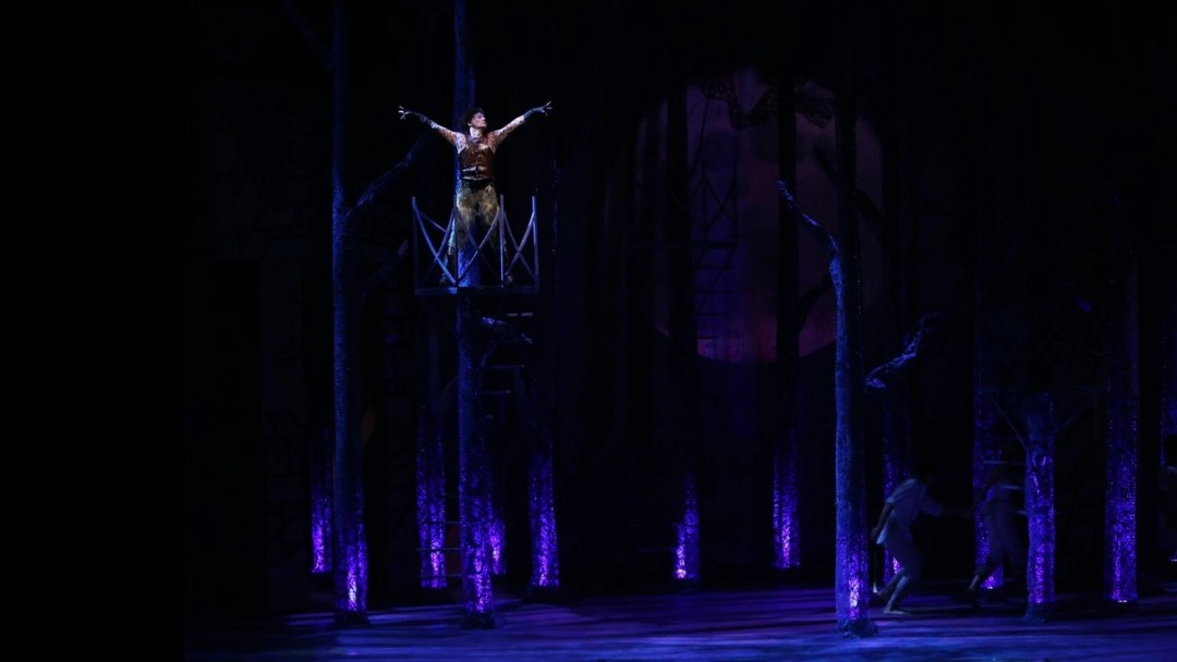 Jim Poulos A Midsummer Night's Dream at Repertory Theatre of St. Louis 2014: Director: Paul Barnes, Set Design: James Kronzer, Costume Design: Susan Branch Towne, Lighting Design: Lonnie Rafael Alcaraz, Choreographer: Matt Williams, All Photos: ©Photo by Jerry Naunheim Jr.