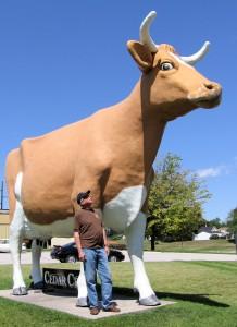 Cedar Crest cow