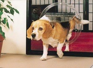 dog-doors-300x220 Dog Doors