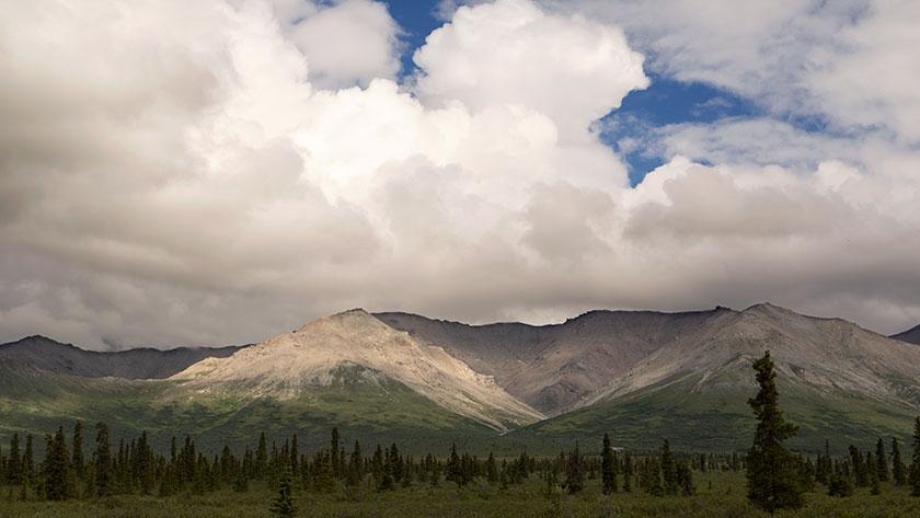 White Mountain in the Rain
