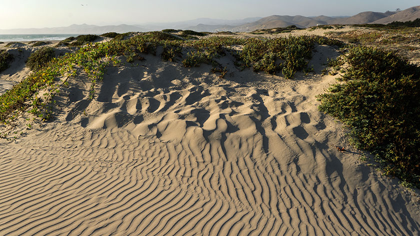 The Dunes at Morro Bay