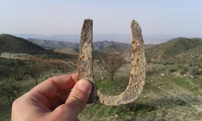 Podkova z olivového háje ve španělské Andalusii.