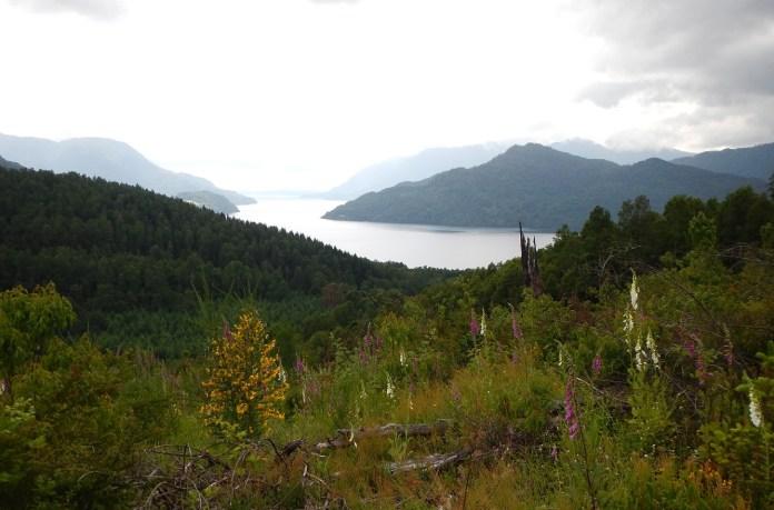 Výhled na jezero Panguipulli pod vulkánem Mocho Choshuenco v Chile.