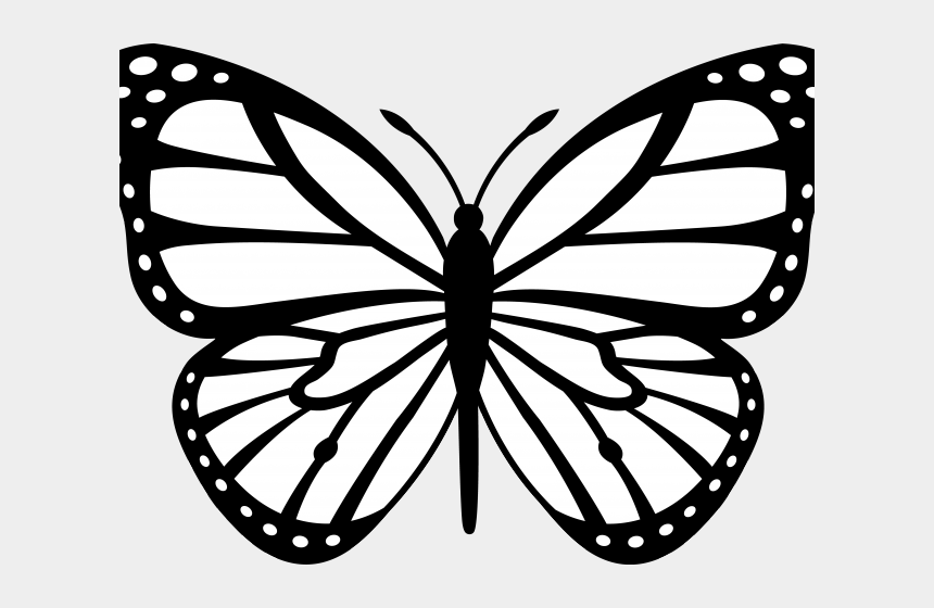 Butterfly Clipart Black And White Monarch Butterfly Black And White Cliparts Cartoons Jing Fm