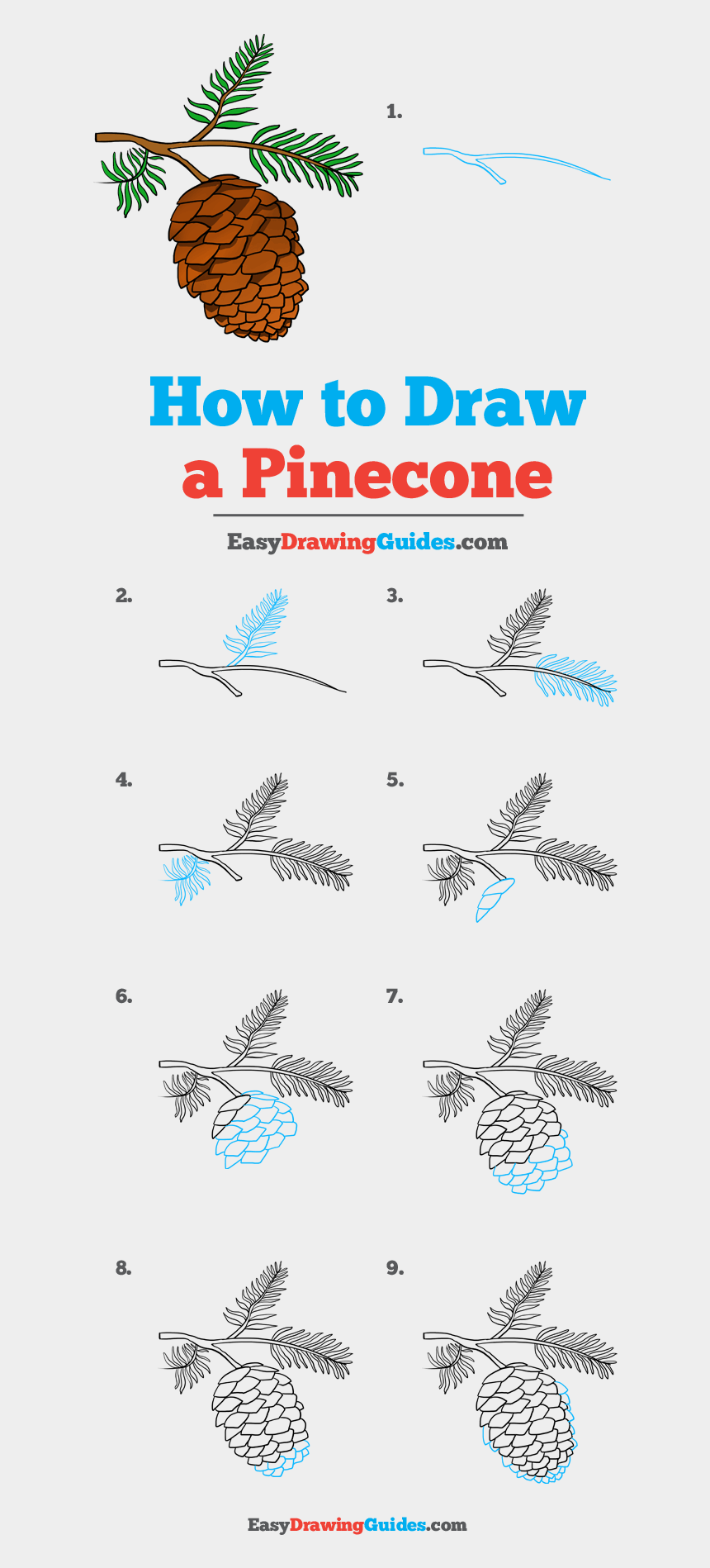 How To Draw Pinecone Basketball Hoop Drawing Easy Cliparts Cartoons Jing Fm