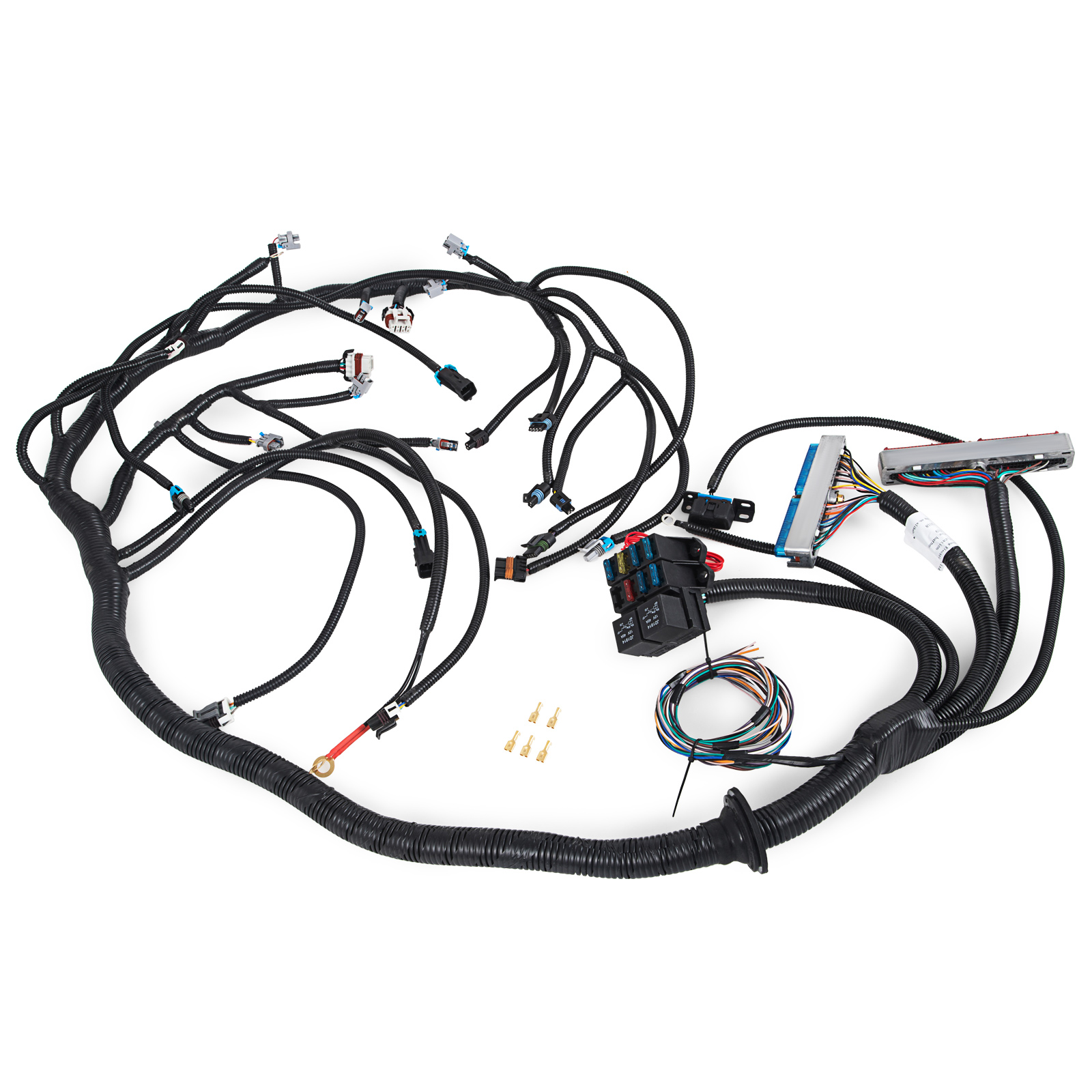 Nice Dbc Ls1 Standalone Wiring Harness With T56