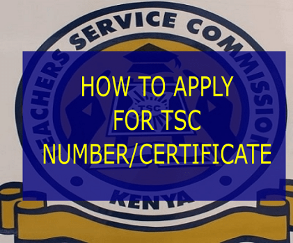How to apply for TSC number and certificate, requirements for TSC registration