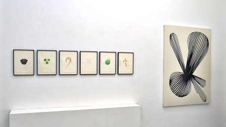 Astrid Koeppe – pretty shiny stuff, Ausstellungsansicht