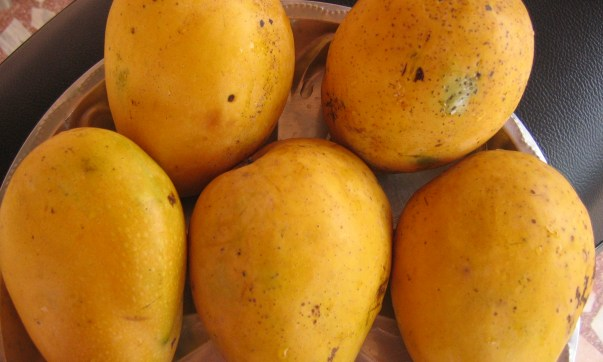 10 Health benefits of Mango