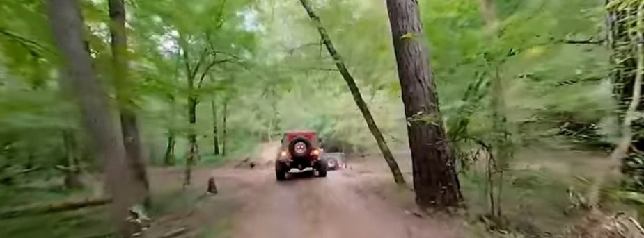 Wrangler Off-Roading 360 View Woods