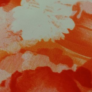 Vibrant Orange Sublimation Print