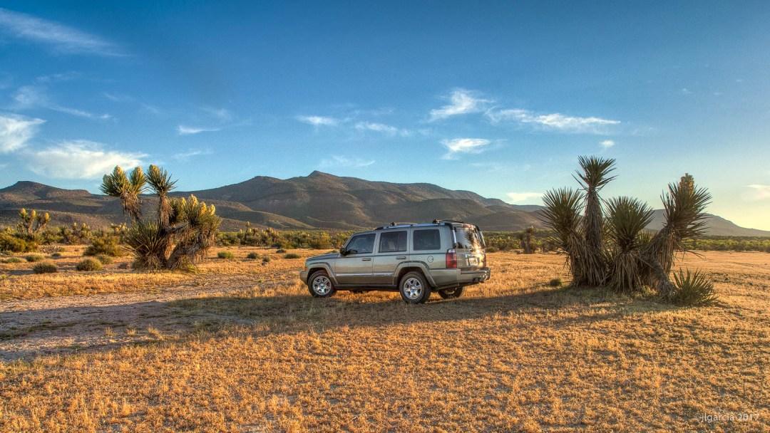 Jeep entre yuccas