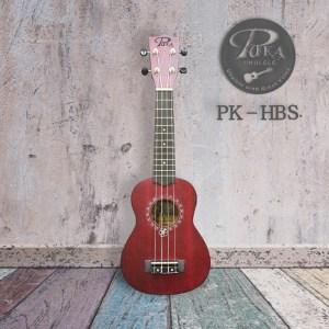 PK-HBS