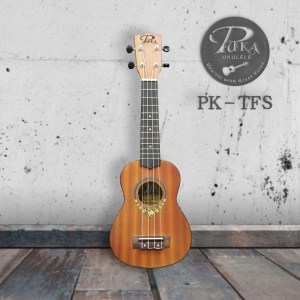 PK-TFS